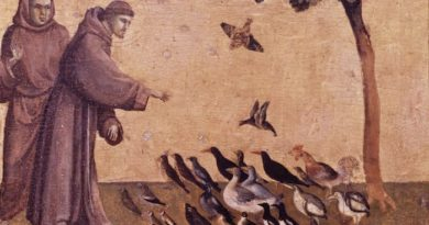 """Che seccatura le omelie che cominciano con """"Il Vangelo di oggi ci invita a …"""""""