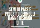 IlCentuplo sostiene il progetto Germogli di Semi Di Pace: votalo anche tu!