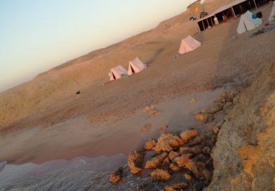 Cronaca di due giorni in un campo beduino