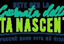 Un Festival per istituire la Giornata per la Vita Nascente – 27 marzo 2021. Va in scena lo spettacolo della vita.